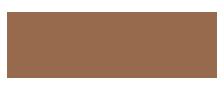 EnVinissi Logo
